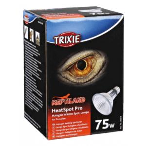 HeatSpot-Pro,-Halogen-Wärme-Spotlampe-75w
